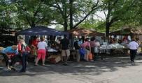 Salvation Army fights the war on hunger in West Park with produce distribution